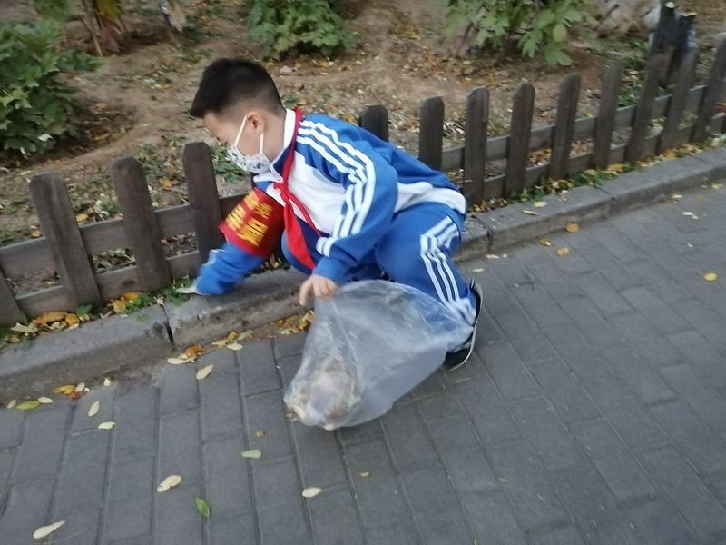 小学生保护环境ppt_垃圾分类 校园更美 - 北京拔萃双语学校